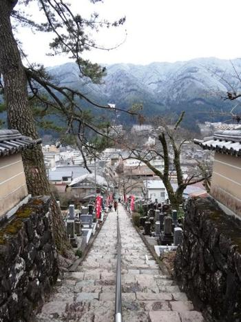 173段の階段を上り切ると、下呂温泉の街並みを見渡すことができます♪少し気合いが必要ですが、訪れた際は、是非!温泉街を一望してみてはいかがでしょう。