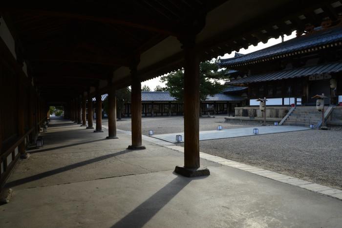五重塔、金堂を取り囲む回廊は、奈良時代に造られたものです。回廊を支える幾本もの木柱に見られる小さな傷は、静かに1000年を超える時間を刻んでいます。