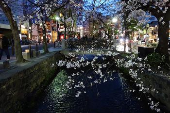 今回ご紹介したお店はどれも、繁華街のど真ん中に位置しています。周辺にはラーメン屋さん、深夜まで営業しているボーリング場、明け方まで営業のバーなども在るので、3次会、4次会とナイトクルーズを楽しめます。 ぜひ、京都の夜の街を冒険してみて下さい♪
