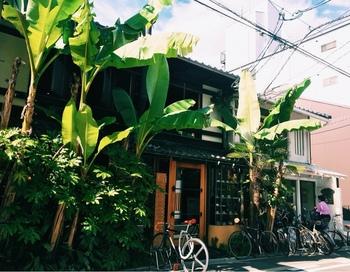 二条通りの烏丸と河原町の間に位置する、大きなバナナの木が目を引くブックカフェ『Cafe Bibliotic Hello!』。 二階立ての建物は吹き抜けになっており、開放的です。