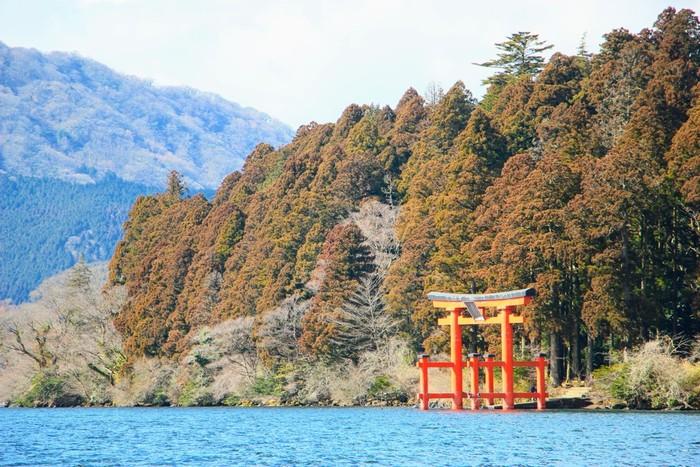 東京から小田急ロマンスカーで1時間で行ける箱根は、一人旅にもおすすめのスポット!温泉やパワースポット、美術館と、旅するにはもってこい!また、川や緑が所々にあり、自然を感じながら旅を満喫できる素敵なスポットです。
