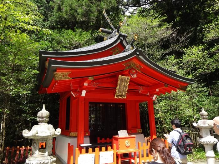 箱根に来たら、おすすめなのがパワースポット!恋愛の神様「九頭龍神社 新宮」は箱根神社のすぐお隣にあり、二つの神社を歩いてお参りする事が出来ます。のんびり散策するには、おすすめのスポットです!