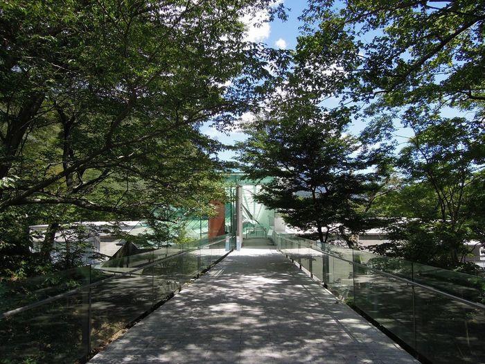 ポーラ美術館 / 神奈川県箱根町・・・「箱根の自然と美術の共生」がコンセプトの美しい森の風景に溶け込む美術館。森の遊歩道を歩いて「カフェ・チューン」で休憩タイム。ランチなら併設のレストラン「アレイ」へ。大窓から眺める森の風景が楽しめますよ!