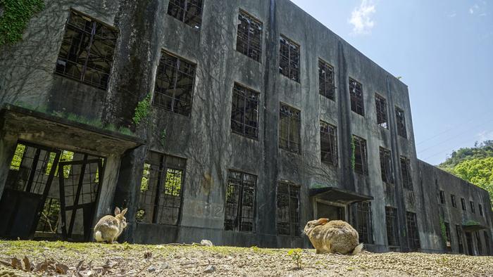 """発電所跡。 かつて毒ガスを機密に製造されていたため、""""地図から消された島""""だった大久野島。 島内には当時の毒ガス貯蔵庫などの廃墟を残し、資料館を設置して戦争の悲惨さや平和への願いを訴え続けています。"""