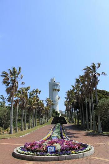 そしてもう1つの見どころが、道の駅南房パラダイスに併設されているアロハガーデン。敷地内には展望塔もあります。