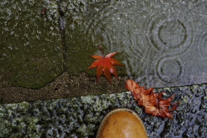 製法や素材にもこだわりのあるパラブーツは油分をたっぷり含み防水性を高めた「LisseLeather(リスレザー)」を使っているため雨の日でも革靴を履くことができます。  そんなパラブーツを、定番人気から個性的なアイテムまでコーディネートと共にご紹介します!