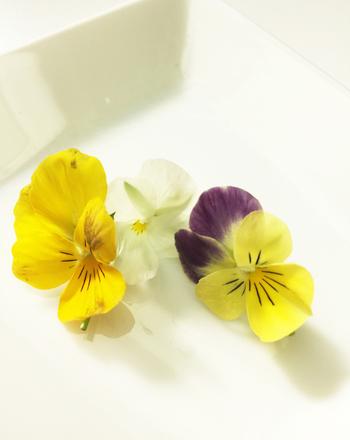 エディブルフラワーのレシピはいかがでしたでしょうか?ちょっと彩りが欲しいときに添えるだけなので気軽に使えます。特に美味しい!というわけではありませんが『お花まで食べられる』ということがちょっとワクワクしませんか?