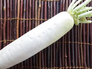柔らかく、身の厚みもあるので調理がしやすい部分です。大根の存在感をしっかりと感じられるような料理が適しています。