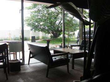 テラス席からは多摩川が一望できます。暖かいシーズンはリゾート感いっぱいで、川風が気持ちよさそう。ちなみにお店の前には桜の古木があります。