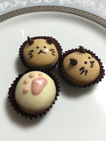 ネコをモチーフとした可愛らしい形のチョコレートもお茶のお供におすすめです。