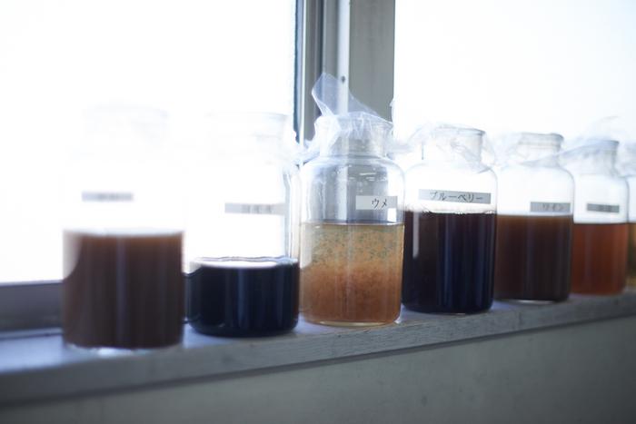 染色テスト用の、様々な食材から抽出された染料。「ヨモギ」「ウメ」「ブルーベリー」etc.各ボトルには、それぞれの食材名がラベリングされています。