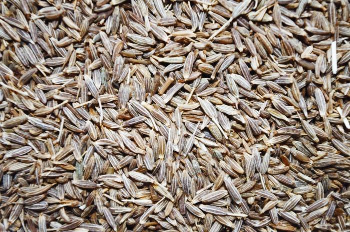 クミンは強い刺激的な香りとかすかな苦味と辛味が特徴で、カレー以外にも肉料理やパン、クッキーなど広範囲に使われています。インドではホールで使いますが、カレーに使うときのポイントは、必ず油で炒めること!最初にクミンを油で加熱して、十分に香りを引き出すことが重要です。ダイエットに効くと話題のスパイスで、鉄分や効酸化物質であるクミンアルデヒドという成分が、アンチエイジングにも効果的!という女性にうれしいスパイスです。