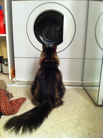 厚手のものは特に、脱水時間を長めにすれば乾く時間の短縮になります。洗った洗濯物を片づけたいのに乾いていない…なんていう、小さなイライラも避けることが出来ますね。