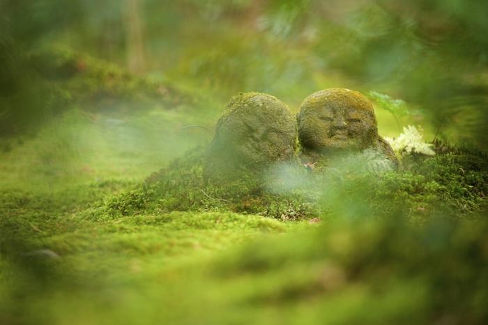 三千院で人気なのが、こちらの「わらべ地蔵」。柔和な表情で可愛らしいですよね。心癒される時間を過ごしてみてはいかがでしょうか。