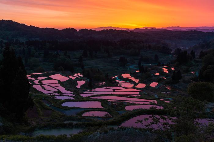 """「にほんの里100選」にも選ばれている新潟県十日町市にある""""星峠の棚田""""。その美しさに魅せられて、全国から多くのカメラマンが集まる名所です。季節や時間帯ごとに、それぞれ表情の違う棚田が見られます。"""