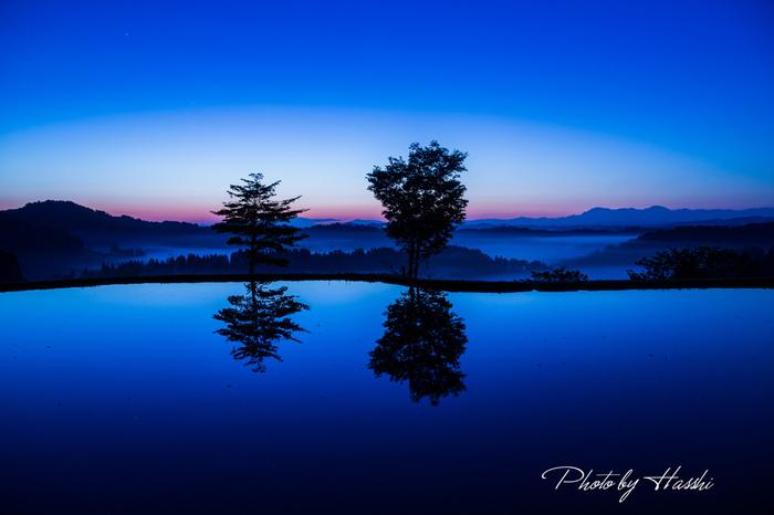 水面への写り込みが何とも美しい一枚。ぽつんと立つ2本の木が、何だかロマンチックですよね♪