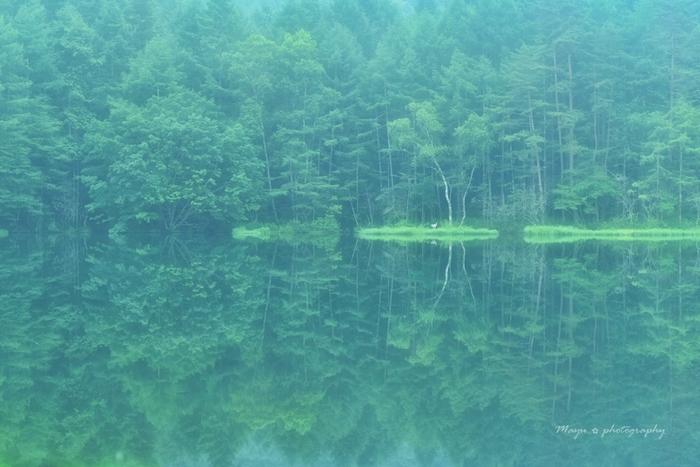 東山魁夷の作品「緑響く」のモチーフになった場所としても有名な、長野県の御射鹿池。周囲の木々が湖面に映り何とも神秘的な世界です。