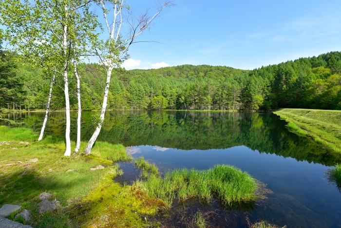 季節や時間帯、その日の天候によってもまた違った美しさを見せてくれます。心静かに、一人旅にもぴったりです。