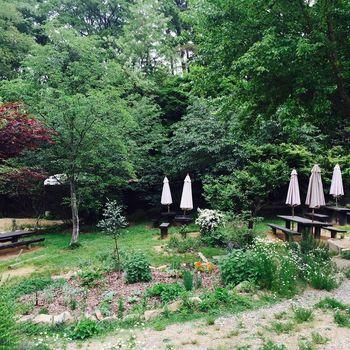 森林浴をしながらの食事はまた格別でしょう♪夏は避暑でやってくる人も!テントの下の木陰でランチというのは、夏の醍醐味ですよね♪外で食べるとおいしさも膨らみます。