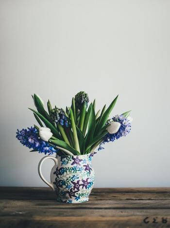 大胆に、球根系の植物でまとめています。白×濃いブルーの組み合わせがとっても涼やか。