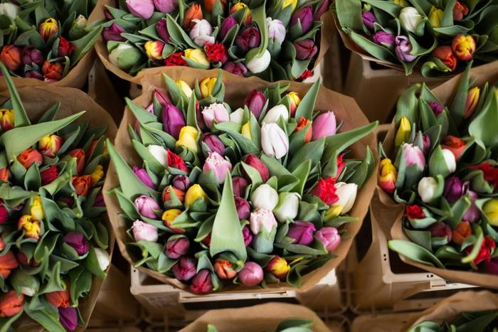 春といえばチューリップ! 豊富な色バリエーションも魅力のお花です。  いろんな色をたっぷり詰め込んで、元気いっぱいのカラフルブーケが完成!