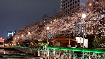 ゲートの奥で左右に分かれます。お花見シーズンは、左手のレストランでの予約が一斉にスタートします。右手のカフェゾーンは、並べば入店できます。満開の桜の下、向こう岸で行き交う電車を眺めながら過ごせる開放的な川辺のテラスは、最高に気持ちのよい空間。夜桜も、まったりと楽しむことができます。