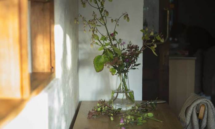 店舗を構えない「la feuille(ラフイユ)」。個人的にお願いしない限り、年に数回のイベントでしか会えないそのお花屋さんでは、素朴でやさしい植物やお花たちが待っています。