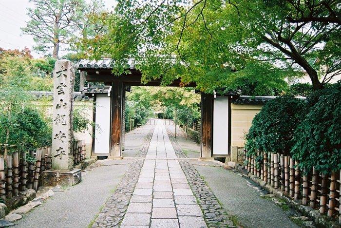 世界遺産に登録されている龍安寺。 こちらの苔も圧巻の一言です。