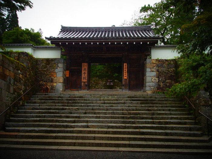 由緒と貫禄を感じさせる三千院の門扉。 悠久の時を刻んできた寺院ならではの佇まいです。
