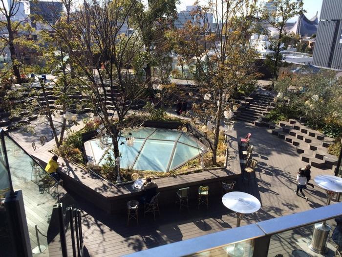 東急プラザ・表参道原宿の屋上テラス「おもはらの森」も注目の屋上庭園です。