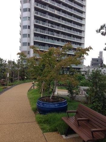 公園内にはベンチもあり、都会の喧騒を忘れてゆったりとした時間を過ごせます。