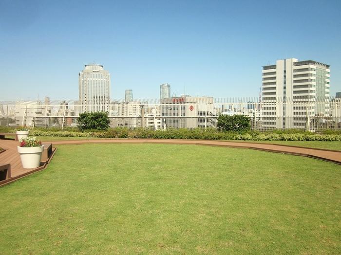 青い空の下、気持ちのいい芝生の上で見る周囲のビル群は、街中と違った景色に見えます。