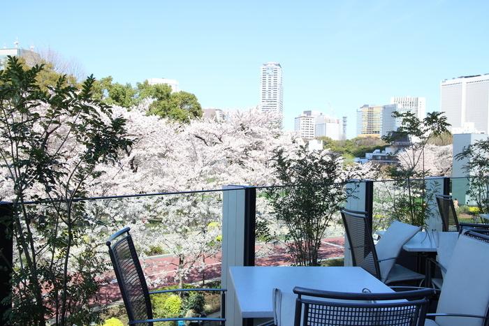 六本木ミッドタウン内、禅をテーマにした、ジャパニーズモダン料理のお店です。テラス席では、食材からも景色からも四季を感じられるお店。春にはもちろん、隣接する路面の桜が一望できます。