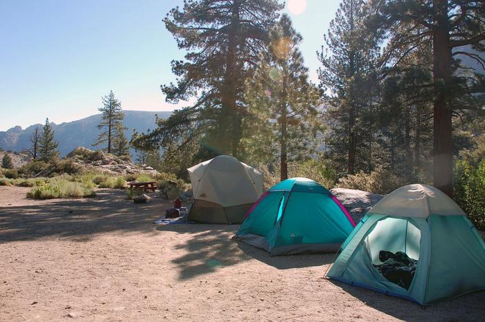 夏と言えば夏休みとお盆!  普段はなかなか一緒にいる機会が少ない家族や友人も、お盆の期間は休みと言う方が多いはず。  なかなか会えない人と、久しぶりに会って盛り上がり新密度を深めるのにキャンプはぴったりなんです。  皆で協力してテントを立てたりご飯を作ったり。 一緒に何かを作り上げると、それだけ絆も深まります。