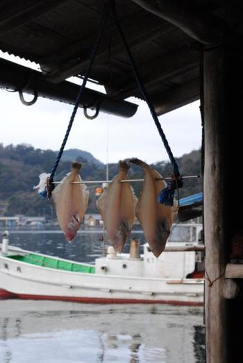 漁労の町ならではの一コマ。