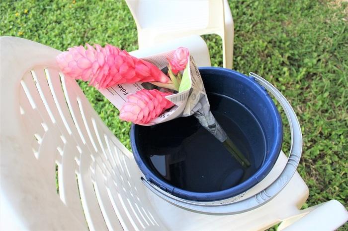 新聞紙の端からクルクルと巻いていきます。この時、花首が真っ直ぐに固定されるように、ギュッギュッと新聞紙を巻きつけるようにします。  巻きつけたら、半分以上水を張ったバケツに、新聞紙で巻いた花を浸けます。浸けたら、水から出ている新聞紙に霧吹きをして湿り気を与えます。  そのまま、半日から1日放置します。