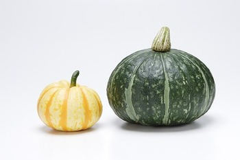 ほくほくとした食感と優しい甘さが嬉しい、かぼちゃ。きれいなオレンジとグリーンのコントラストがお弁当の「チョイ足し」に役立ちます。