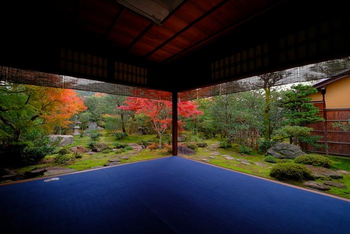 紅葉の季節に訪れたい街、京都。あざやかに彩られた街やお寺を楽しみながら、どんどん歩いていけそうです。でも…。