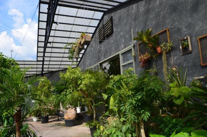 出入口の周りはもちろん、ジャングルのような室内にも珍しい植物がたくさんあります。