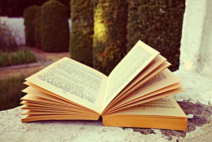 せっかく日記を付けていても、実は現地では通じない不自然な英語でした...ではあまりにもったいない!辞書の例文や本、ネイティブの英語を真似て、貪欲に自分のものにしていきましょう。この繰り返しが英語上達のポイントです。例文の単語を入れ替えるところから始めて、自然な英語をインプットしていきましょう。