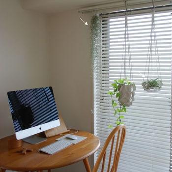 窓辺でハンギングをするならカーテンレールが一般的。S字フックをかけて鉢を吊るします。カーテンレールの耐荷重を確認して、重すぎないものを選びましょう。