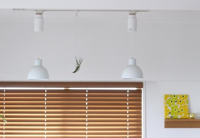 こちらもダクトレールの活用例。照明器具とプラントハンガーが白で統一され、モダンなアート作品のようです。