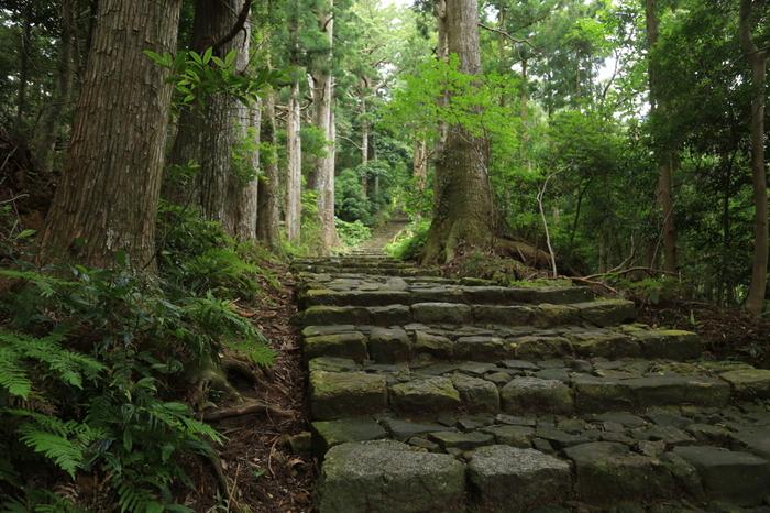 玄関口の大門から、最奥部の奥之院まではたっぷり約4km。景色を見ながら歩くだけでも高野山の空気を肌で感じることができます。歩いて回る見どころが多いので、訪れる際にはスニーカーやウォーキングシューズがおすすめです。