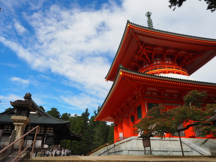 高野山の中心、壇上伽藍(だんじょうがらん)には、ひときわ目を引く、朱塗りの巨大な塔がそびえます。高さ48.5mの大塔は空海が修行場のシンボルとして建設し、現在のものは昭和時代に再建されたものです。実際に訪れてみると、想像以上の大きさにきっと驚くことでしょう。根本大塔の中は自由に拝観することができます。内部に広がるのは真言密教の経典である「曼荼羅」を立体的に表現した空間で、訪れた人が自ら曼荼羅を体感できるという仕組み。極彩色の仏様の美しさに目を奪われます。