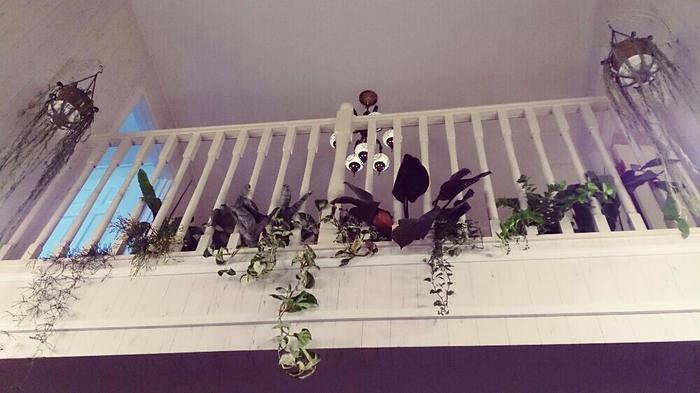 吹抜けのあるお家なら、手すりの隙間から植物を垂らしてみては?お手軽にハンギング風の空間がつくれます。