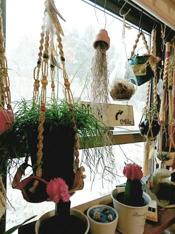 鉢を吊るす紐は麻紐やチェーンなどがよく使われますが、マクラメ編みなどで手作りすれば、より個性的になります。