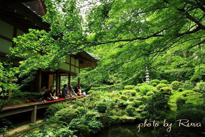 かつて、貴族や僧侶の隠居の地として知られている京都市左京区大原には、8世紀に創建された天台宗の寺院、三千院があります。美しい緑と静寂に包まれた三千院は、京都市街地の活気が嘘そのように、しんと静まり返っており、訪れる人々の心を癒す不思議な魅力があります。