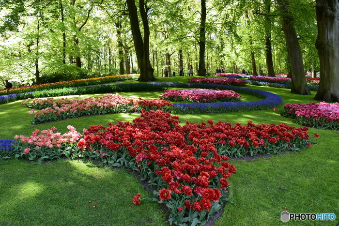 庭園は3月中旬~5月中旬の2ヶ月のみ開園されています。来園予定の方はスケジュールチェックを忘れずに♪