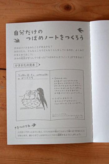 ノートの中身は本当に観察ノートなんです。書き方の見本も付いているので、お子さんと一緒に、近くにできた巣とツバメの親子の観察をしてみても素敵ですね。