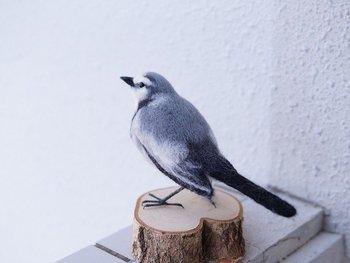 本物と見紛うようなこちらは羊毛フェルトのセキレイ。お部屋にちょっと置くだけで、家に野鳥がやってきたみたい。